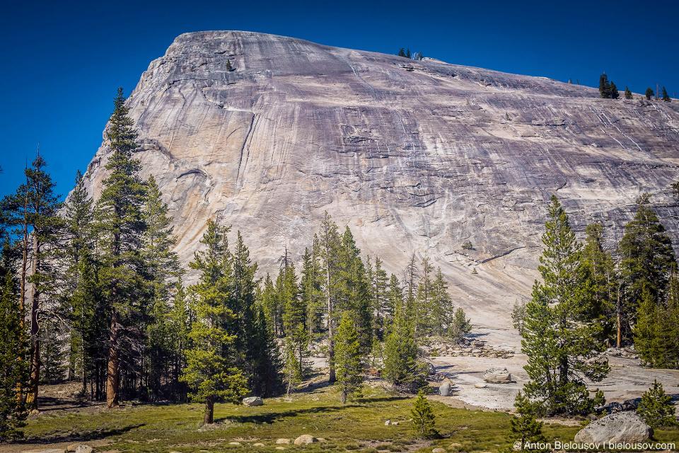 Гранитный монолит в Yosemite National Park, CA