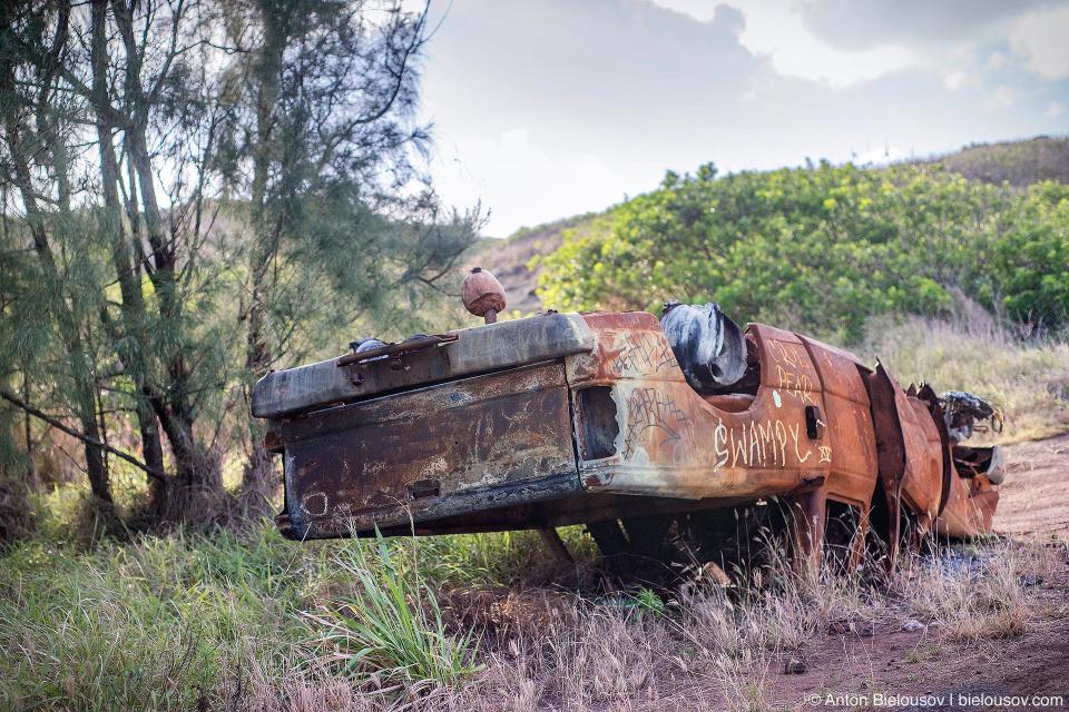 Car wreck at Kahekii Highway (Maui, HI)