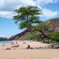 Большой пляж, по непонятной мне причине, часто возглавляющий списки пляжей Мауи. Делать здесь совершенно нечего, тени нет, пальм нет, кораллового рифа нет, есть только сопка вулкана и дядька, пытающийся втюхать самые дорогие на острове кокосы — $7 обычные и $9 большие.