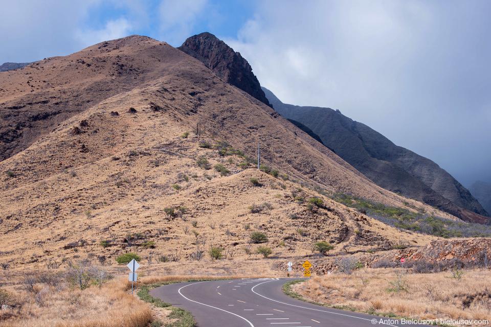 Southern hills of Pu'u Kukui (Maui, HI)