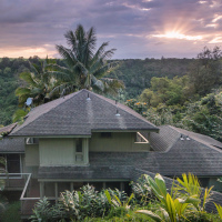 В то время как многие снимают квартиру или номер в гостинице поближе к морю, отправной точкой для нас стал этот дом в джунглях, который сам по себе может считаться приключением.