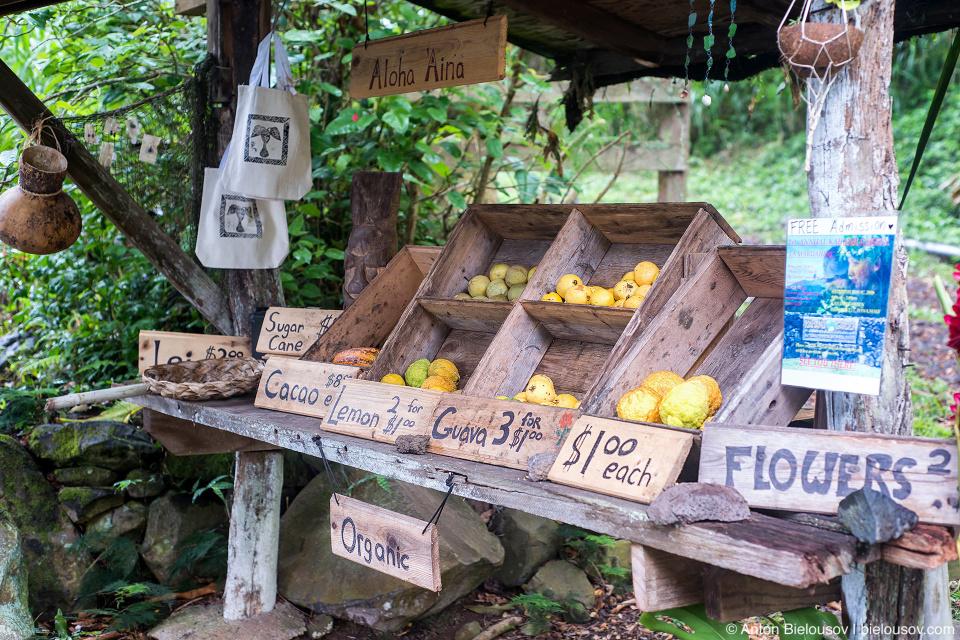 Прилавок с фруктами (Maui, HI)