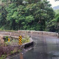 Шоссе из Кахулуи в Хану быстро пустеет а затем сужается двух полос с однополосными мостами. Постоянные радуги сменяются тяжелым серым небом.  Эта часть дороги вокруг Мауи — самые дикие джунгли: все вокруг капает, квакает и клокочет в лучших традициях «Парка юрского периода», который, кстати, снимали на соседнем острове.