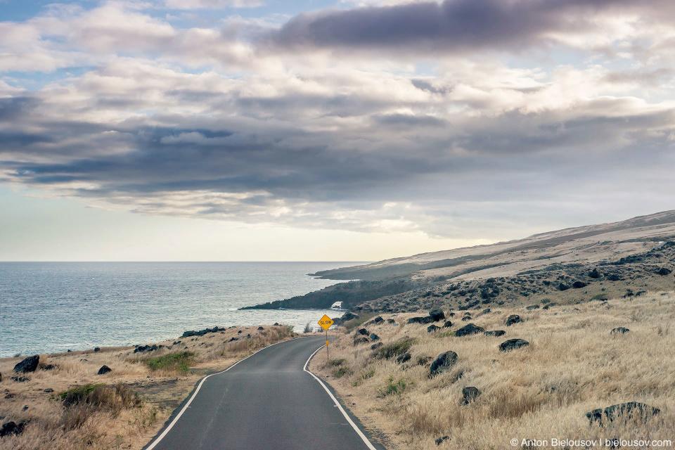 Haleakala south hill side (Maui, HI)