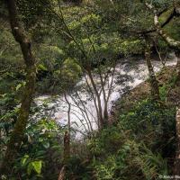 Одна из первых достопримечательностей на опустевшей дороге — водопад Твин-фолз. Так себе водопад, в окрестностях Ванкувера в лесу можно случайно набрести на такой же а то и больше.