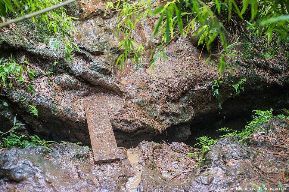 Na'ili'ili-Haele Falls trail (Maui, HI)