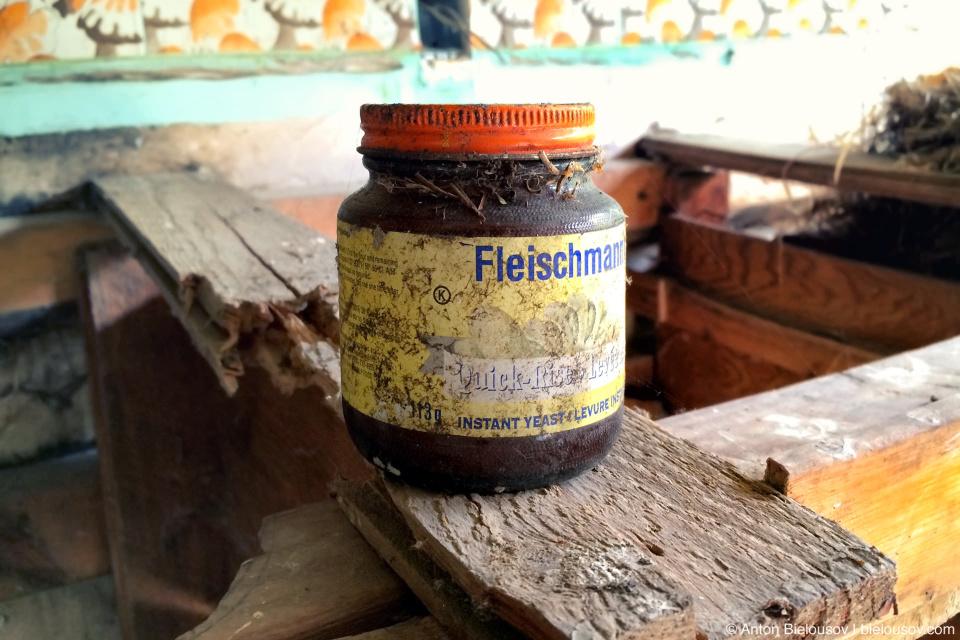 fleischmann's yeast quick-rise 1986