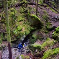 Вход в пещеру — далеко не всегда очевиден. Довольно много пещер в парке было обнаружено уже после его открытия в 1971 году, многие из них по несколько лет держались в секрете.