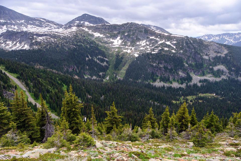 Вид с плато на одной из вершин Trophy Mountain