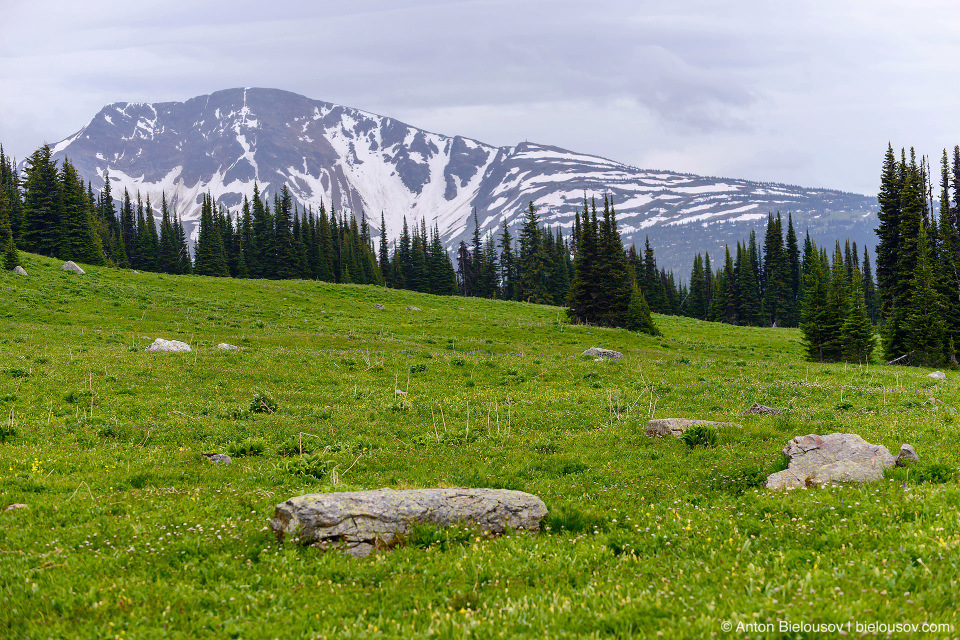 Trophy Mountain (Wells Gray Provincial Park, BC)