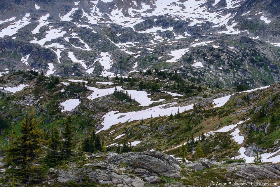 Trophy mountain Sheila Lake lookout