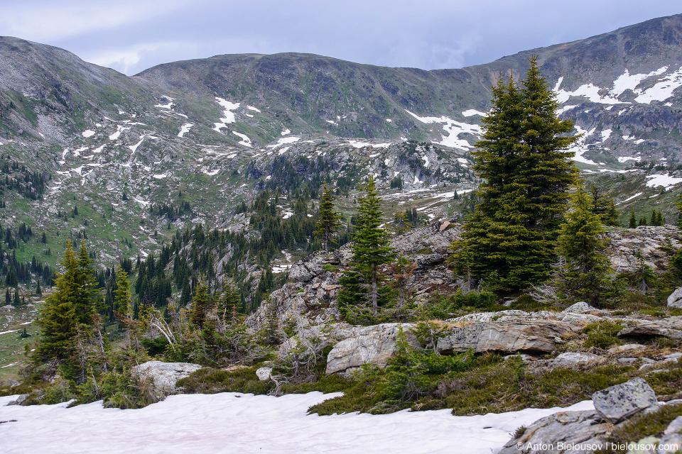 Trophy mountain Sheila Lake. lookout