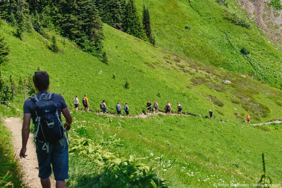 Cheam Peak trail