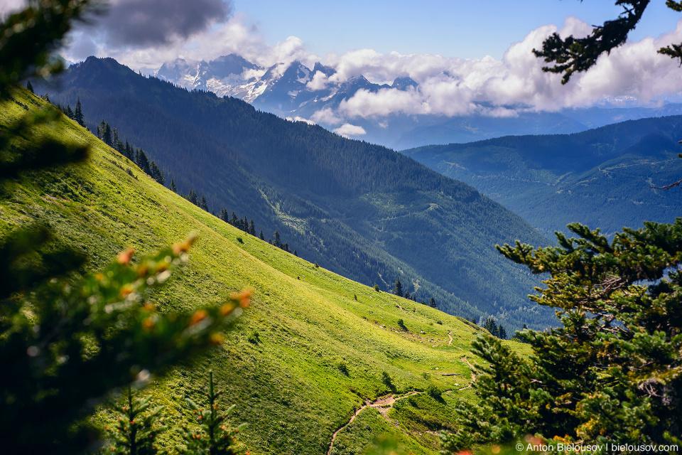 Тропа на Cheam Peak