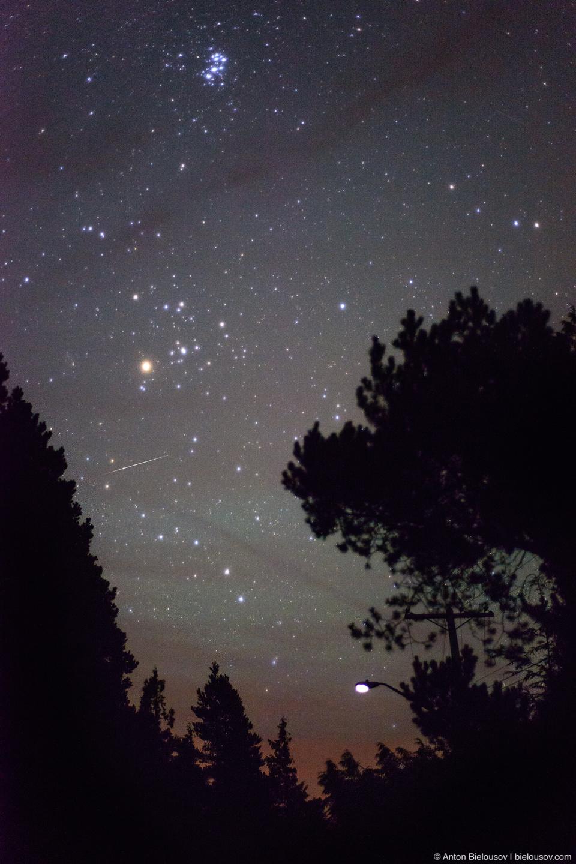 Звездное небо в Национальном парке Pacific Rim