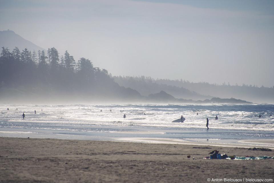 Surfers on Pacific Rim Long Beach
