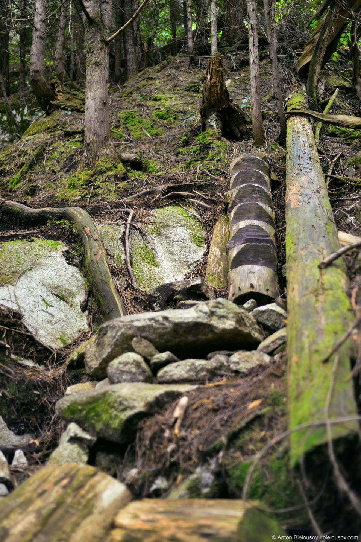 Shannon Falls Trail