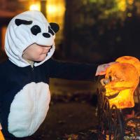 Малыш-панда, сначала проникся раздаванием конфет — очень уж у него хорошо получалось загребать жменю, перекладывать в чье-нибудь ведро и махать пока.