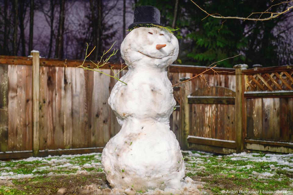 Снеговик на заднем дворе