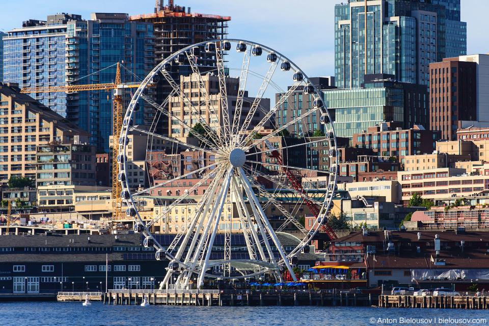 Seattle Eye Wheel