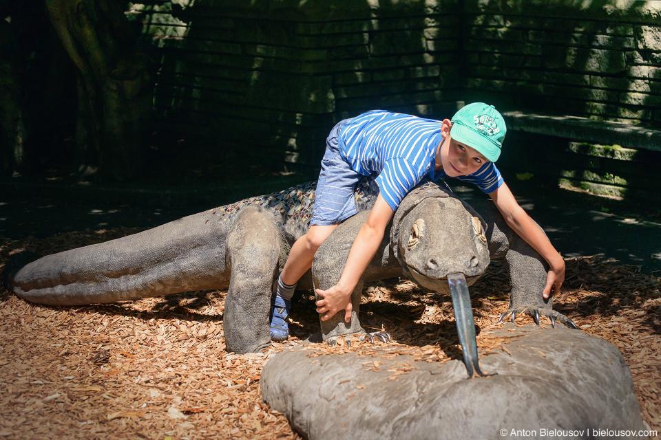 Seattle Zoo with City Pass: Komodo Dragon