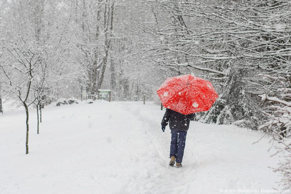 Снег в Порт-коквитламе