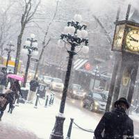 Снежное утро в Ванкувере