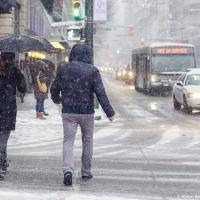 Спустя всего пару дней после того как в соцсетях стали появляться первые инстаграмы ванкуверских подснежников, у нас в городе снова предупреждение о снежном шторме, из-за которого мне пришлось отложить на неопределенный срок снегоходы на Вистлере, где и вовсе обещают более полуметра осадков на выходных.