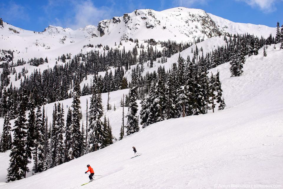 Whistler ski slope