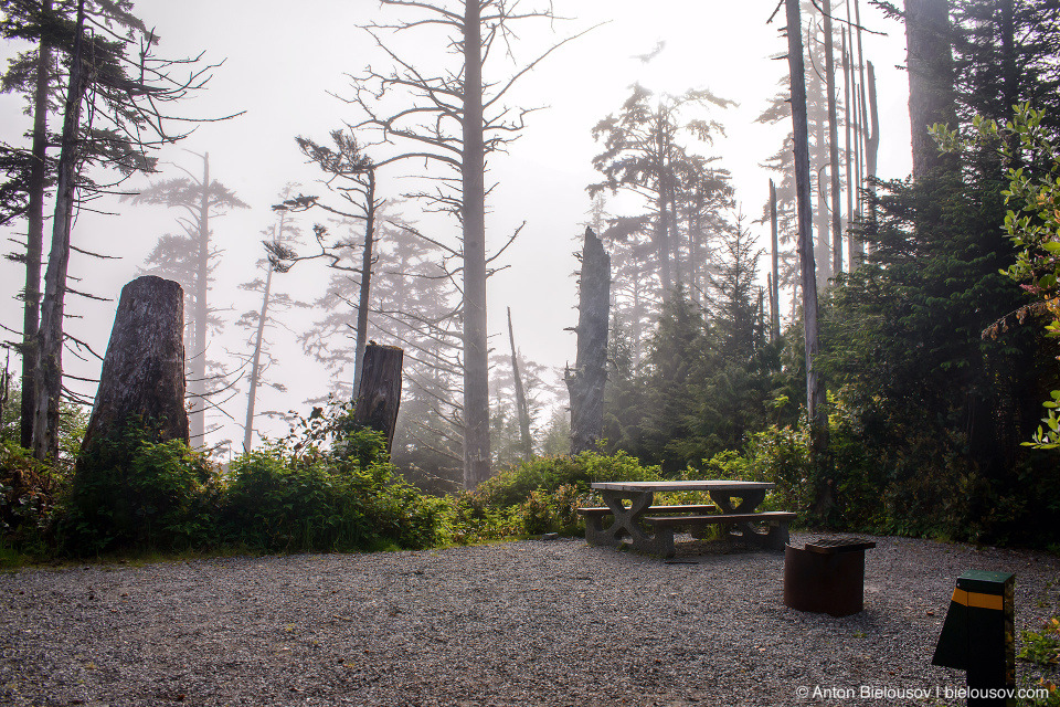 Campsie #90 — Green Point Campground, Pacific Rim National Park, BC