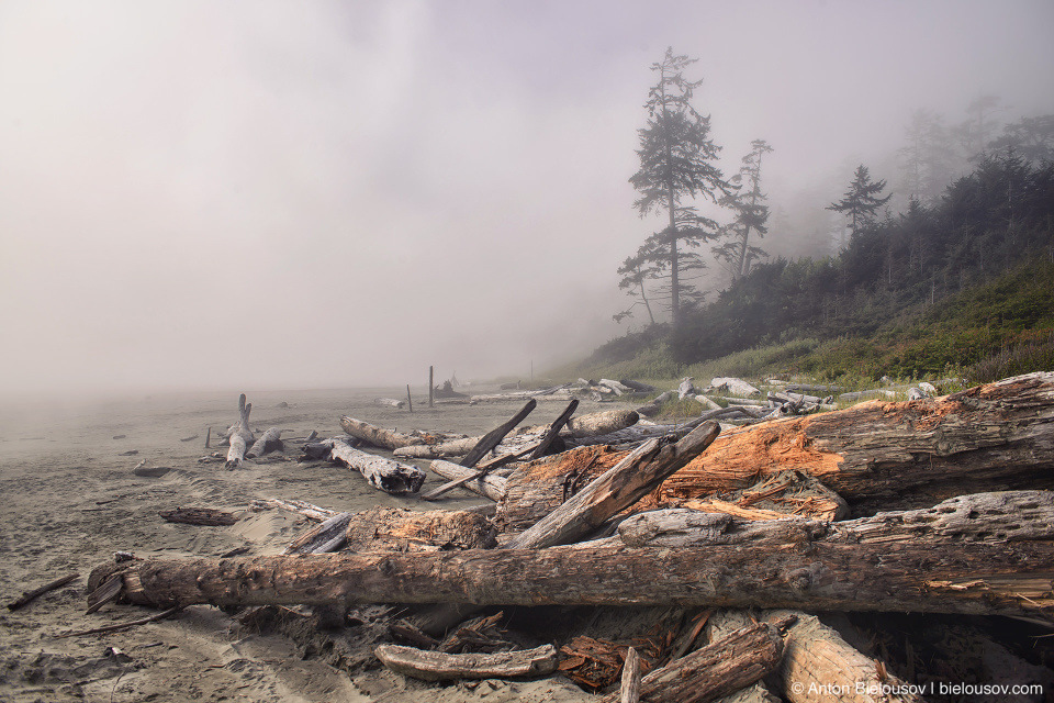 Long Beach (Green Point Campground Entrance, Pacific Rim National Park, BC)