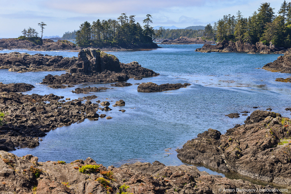Wild Pacific Trail (Ucluelet, BC)