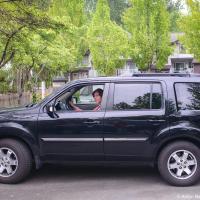 Главное требование к любой машине — чтобы она гармонично смотрелась на фоне жены.