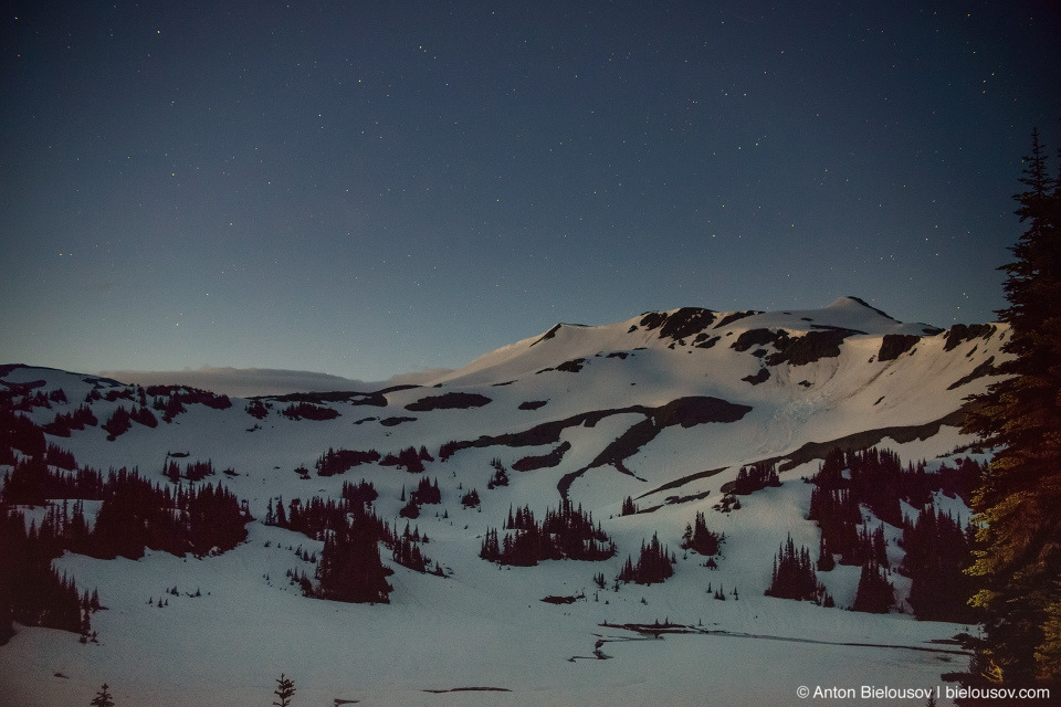 Panorama Ridge night trail