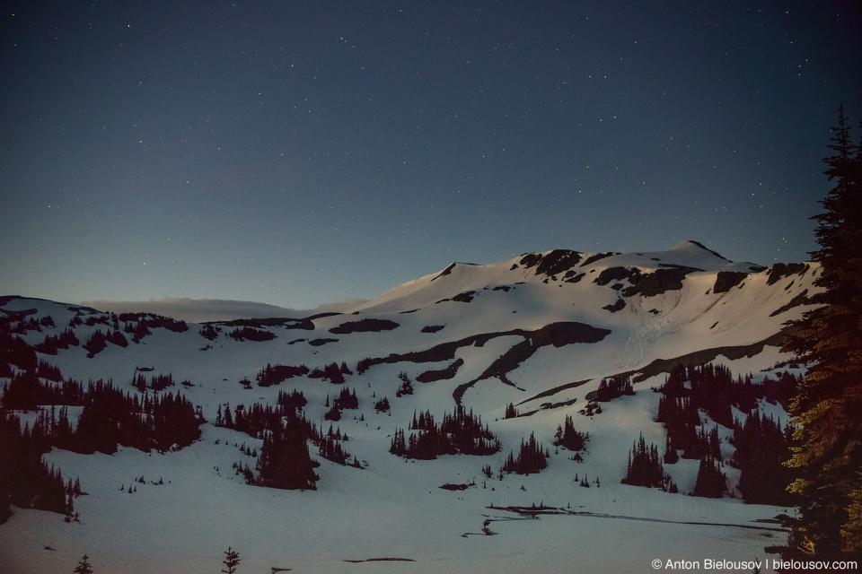 Panorama Ridge night trail