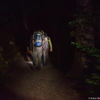 В 10:30 вечера приезжаем на парковку (которая оказалась на удивление забита машинами — всех, кто ночует на кемпинге на озере Гарибальди). И после непродолжительных сборов, включив фонари, входим в темноту леса.