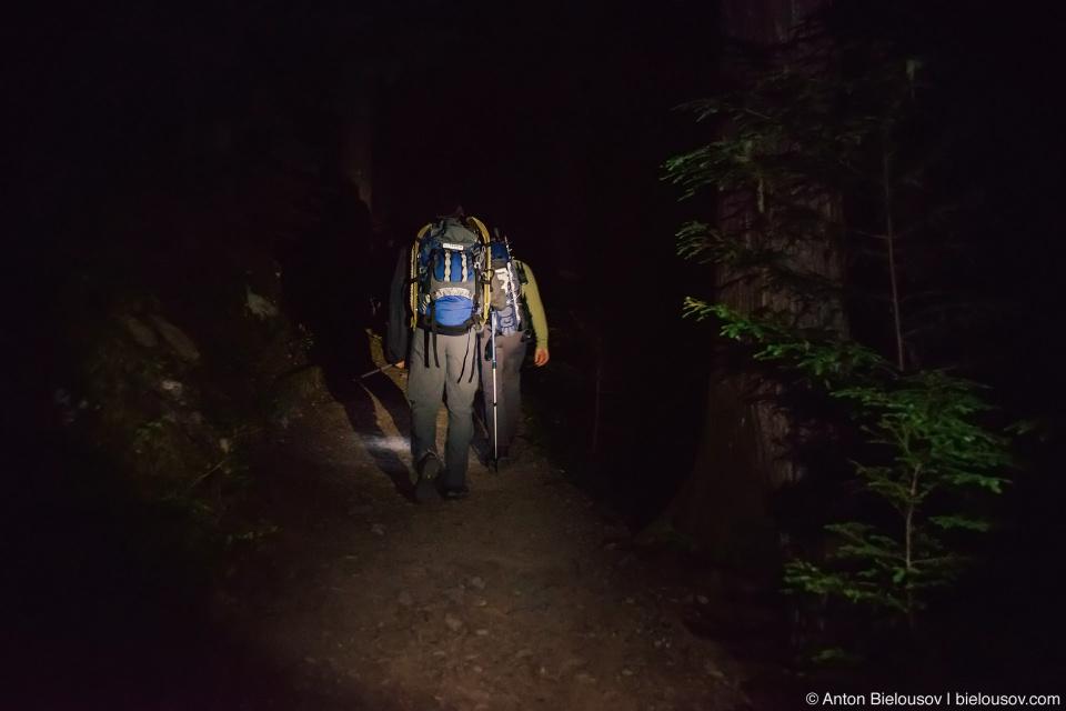 Garibaldi Lake Panorama Ridge trail at night