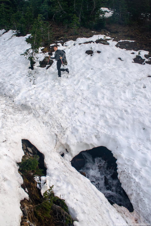 Taylor Meadows meltwater streams