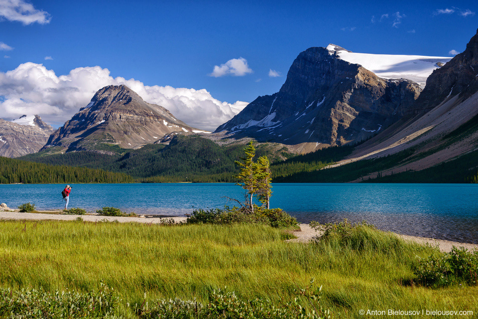 Bow Lake (Banff National Park)