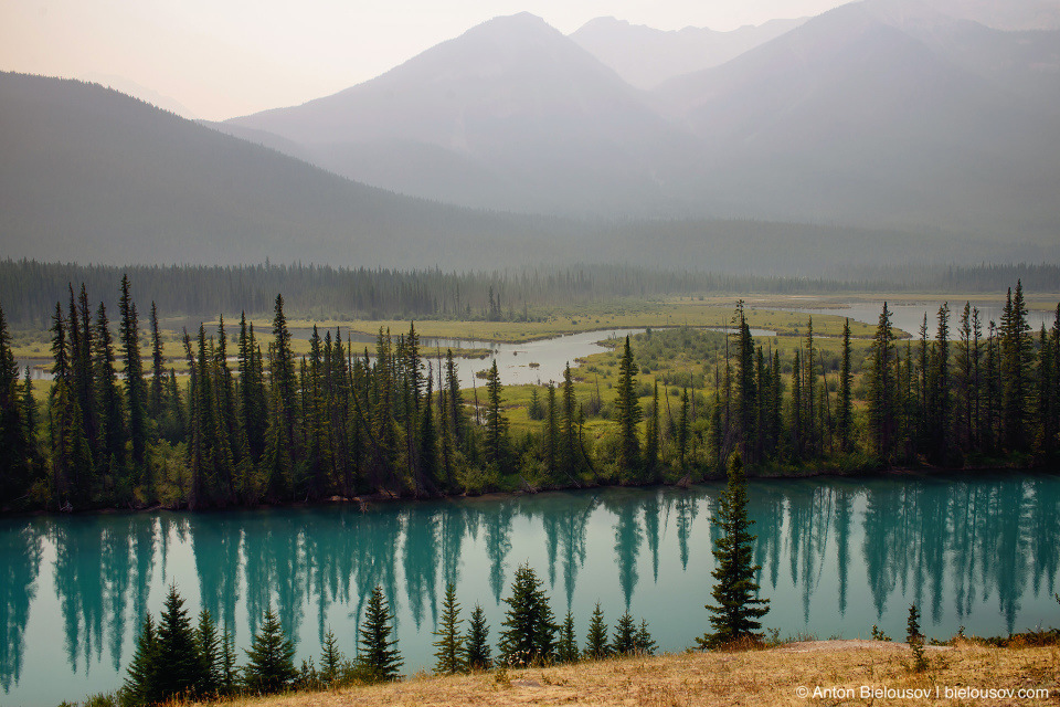 Bow River from Bow Valley Parkway (Banff National Park)