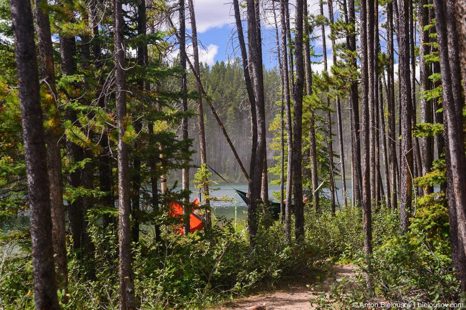 Herbert Lake (Banff National Park)