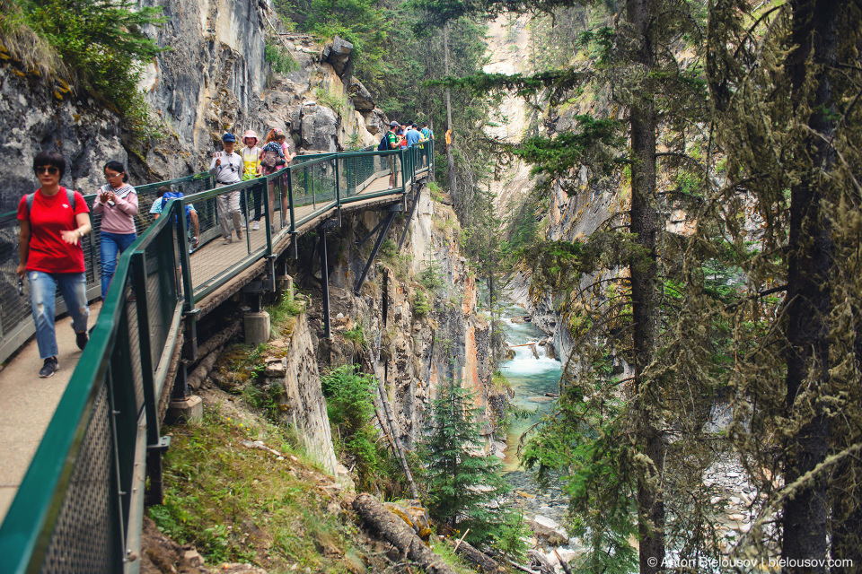Johnston Canyon (Banff National Park)