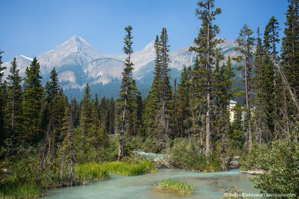 Lake Louise streams (Banff National Park)