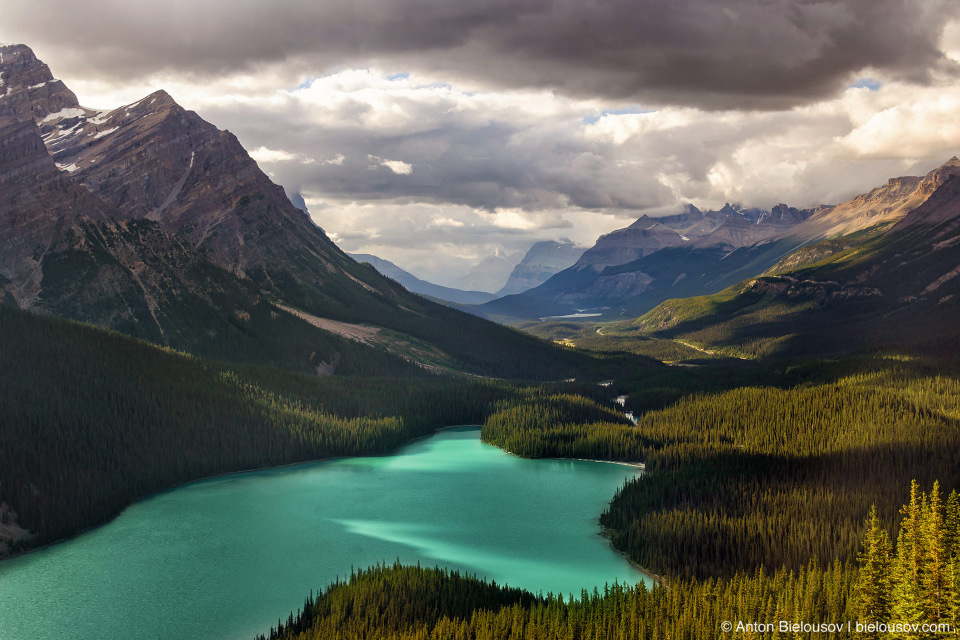Peyto Lake (Banff National Park)