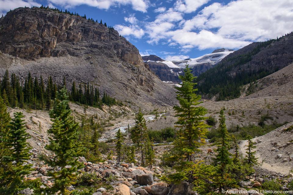 Bow Glacier Falls trail (Banff National Park)