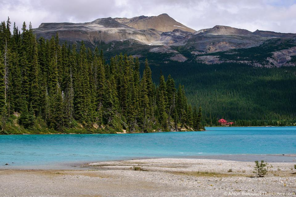 Bow Lake Num-Ti-Jah Lodge (Banff National Park)