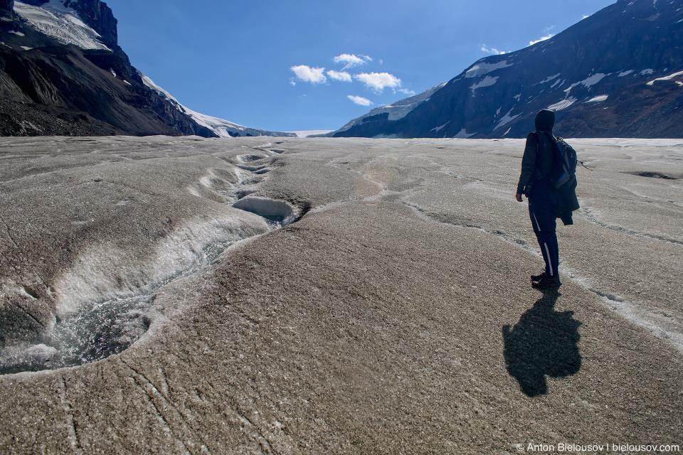 Hiking on Athabasca Glacier, Columbia Icefield, Jasper National Park