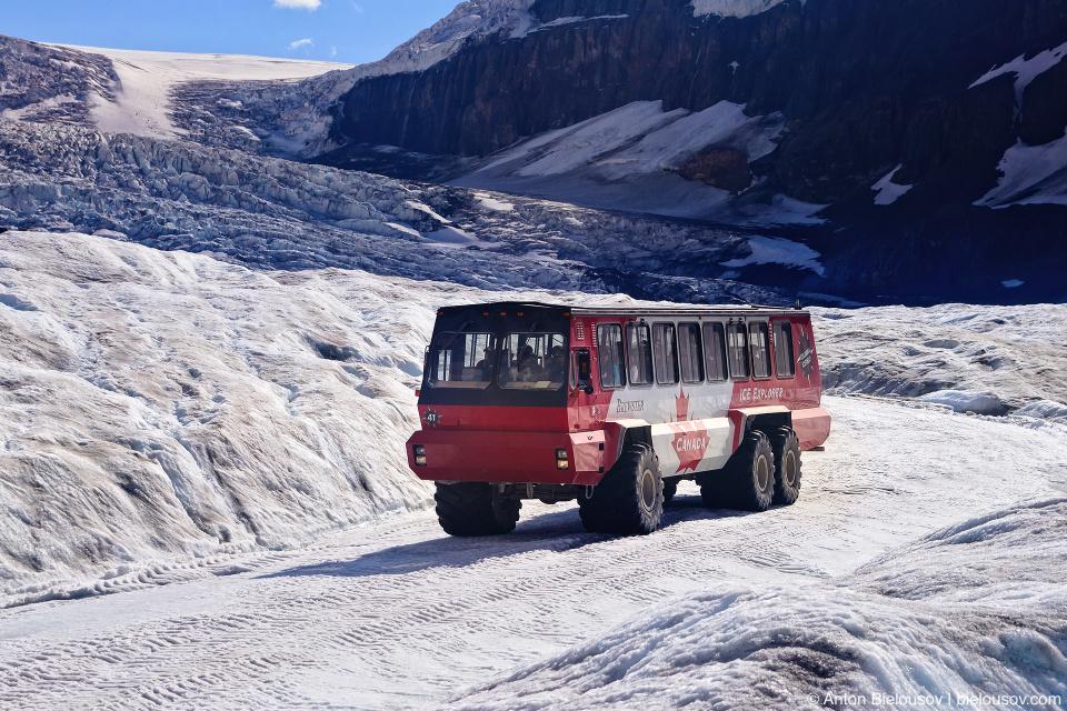 Athabasca Glacier Ice Explorer bus tour, Columbia Icefield, Jasper National Park