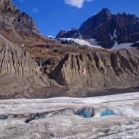 Без спроса на ледник Атабаска