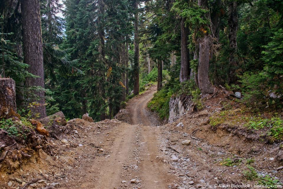 Mount Sproatt alpine trail